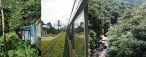 The Serra Verde Express Train