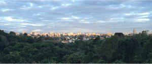 Curitiba Skyline from Bosque Alemâo